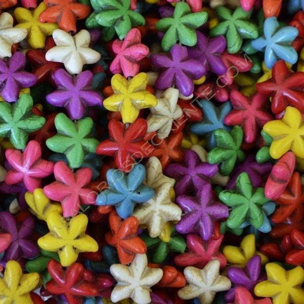 Estrella de mar variada