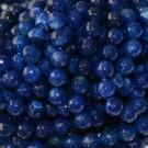 Ágata azul redonda facetada de 10 mm